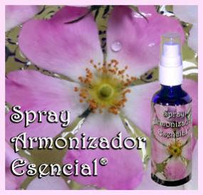Spray® imagen2
