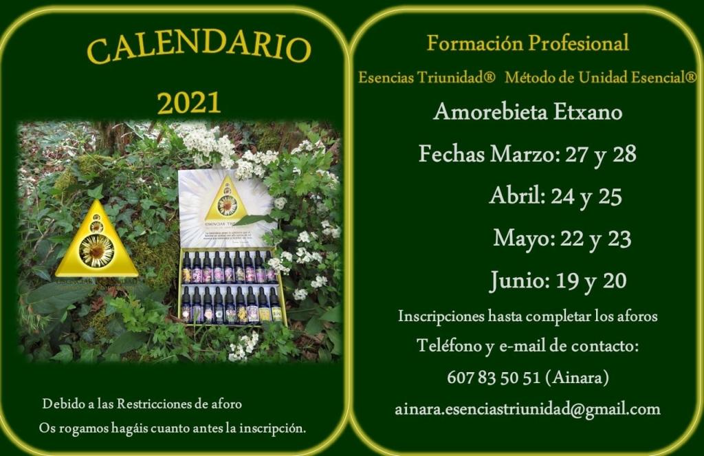 Curso de Amorebieta-Etxano Primavera 2021